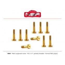 Tornillos de suspension 2,2 x 9mm Formula 1